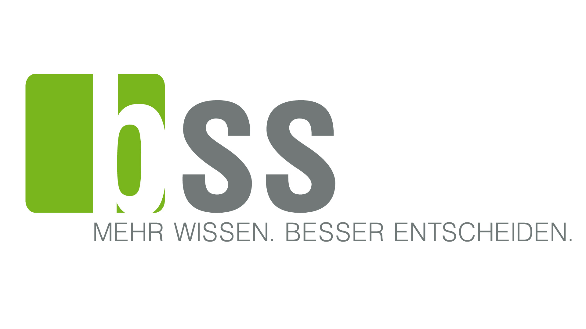 b_s_s_business_software_solutions_gmbh_logo